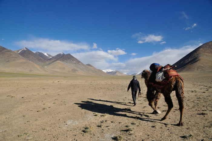 Un paseo en camello por la naturaleza cerca de Murghab
